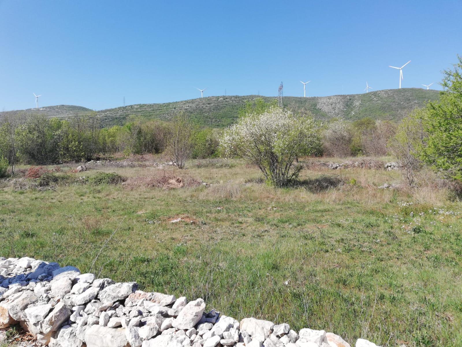 Građevinsko zemljište, 2500m2 – Prugovo